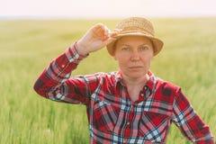 Granjero de sexo femenino que presenta en campo de trigo cultivado imagenes de archivo