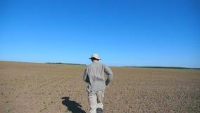 Granjero de sexo masculino irreconocible que corre a través de los pequeños brotes del girasol en el campo en el verano Siga al h almacen de metraje de vídeo