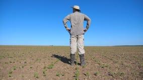 Granjero decepcionado joven que mira los pequeños brotes del girasol en el campo y que siente amenaza de un fracaso de cosecha ad almacen de metraje de vídeo