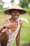 Granjero del arroz Imagenes de archivo