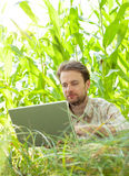 Granjero delante del campo de maíz que trabaja en el ordenador portátil Foto de archivo libre de regalías