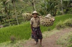 Granjero en Bali imagen de archivo
