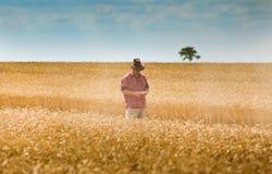 Granjero en campo de trigo Fotos de archivo