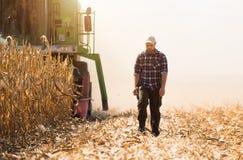 Granjero en campos de maíz durante cosecha Foto de archivo libre de regalías