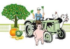 Granjero en el tractor con sus animales Foto de archivo