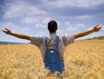 Granjero en un campo de trigo Imagen de archivo libre de regalías