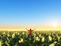 Granjero en un campo verde Foto de archivo libre de regalías