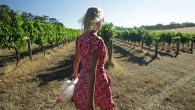 Granjero en viñedo australiano almacen de video