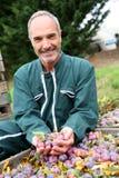 Granjero feliz con una buena fruta de cosecha Fotos de archivo libres de regalías