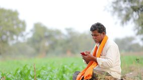 Granjero indio que usa el teléfono móvil en el campo de maíz metrajes