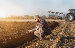 Granjero joven examing trigo plantado mientras que el tractor está arando el fie Imagen de archivo libre de regalías
