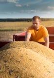 Granjero joven que mira granos del maíz en tractor remolque imagen de archivo libre de regalías