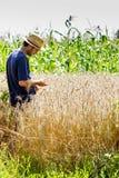 Granjero joven que se coloca en un campo de trigo fotografía de archivo libre de regalías