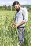 Granjero joven que toca con cuidado su trigo cultivado fotos de archivo libres de regalías