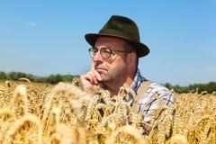 Granjero pensativo en un campo de maíz Imagenes de archivo