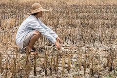 Granjero pobre en un campo del arroz durante la sequía larga imagen de archivo libre de regalías