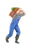 Granjero que lleva una cesta por completo con los vehículos Imagenes de archivo
