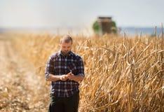 Granjero que mira granos del maíz en tractor remolque Fotos de archivo libres de regalías