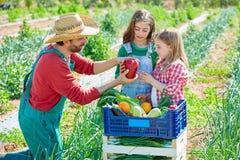 Granjero que muestra a verduras la cosecha a las muchachas del niño Foto de archivo