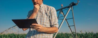 Granjero que usa la tableta en campo de maíz con el sistema de irrigación fotografía de archivo libre de regalías