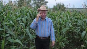 Granjero Standing en un campo de maíz, hablando en el teléfono, discutiendo la cosecha almacen de metraje de vídeo
