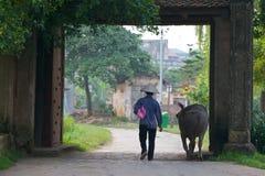 Granjero vietnamita con el búfalo de agua Fotos de archivo libres de regalías