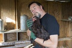 Granjero Worming un pollo libre de la gama Fotos de archivo