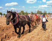 Granjero y caballos que aran el campo en Francia Imagen de archivo