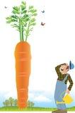 Granjero y una zanahoria Imágenes de archivo libres de regalías