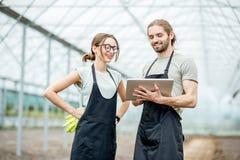 Granjeros con la tableta en el invernadero fotos de archivo
