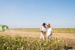 Granjeros en campos de la soja Fotografía de archivo