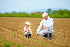 Granjeros, familia en su tierra, comprobando crecimiento vegetal Fotografía de archivo