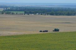 Granjeros que cosechan en el campo del trigo Fotos de archivo