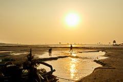 Granjeros que trabajan en la playa Éste es una de las granjas más grandes de la almeja de Vietnam septentrional foto de archivo libre de regalías