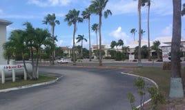 Grankaaiman, Caymaneilanden stock afbeeldingen