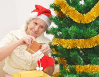 Granny with Christmas stocking Royalty Free Stock Photos