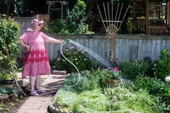 Granny Gardener. Dressed in a straw hat, red dress, and pink slippers takes aim with her hose at a solitary flower Stock Photography