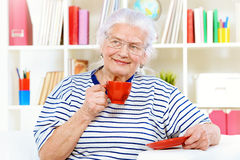 Granny housewife Royalty Free Stock Photo