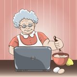 Granny_laptop Stock Photography