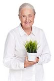 Granny with plant Royalty Free Stock Image
