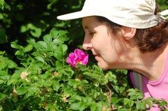 Granny smells eglantine. Old lady sniffs a flower on the green bush Royalty Free Stock Photos