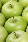 Granny Smith Apples. Fresh green Granny Smith Apples Royalty Free Stock Photo