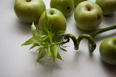 Granny smith apples Royalty Free Stock Photo