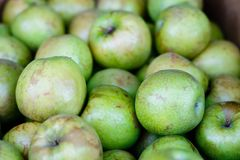 Granny Smith Apples. At a produce stand Stock Photography