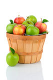 Granny Smith and Gala Apples in a Basket Stock Image
