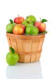 Granny Smith und Gala-Äpfel in einem Korb Stockbild