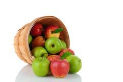 Granny Smith und Gala-Äpfel in einem Korb Lizenzfreies Stockbild