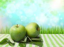 Grannysmed Apple Royaltyfria Bilder