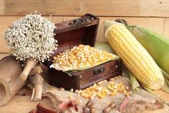 Grano amarillo del maíz y maíz secos frescos Imagen de archivo libre de regalías