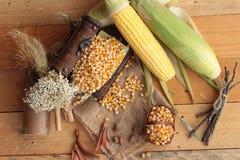 Grano amarillo del maíz y maíz secos frescos Imagenes de archivo